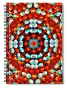 Red And Blue Stones Spiral Notebook
