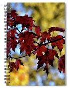 Red And Gold Spiral Notebook