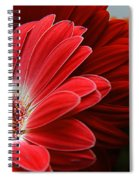 Red And Orange Florals Spiral Notebook