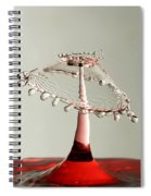 Red And White Crown Spiral Notebook