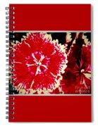 Red And White Mum Spiral Notebook