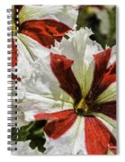 Red And White Petunia Spiral Notebook