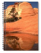 Red And White Reflections In Blue Spiral Notebook