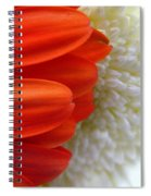 Red And White Spiral Notebook