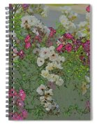 Red And White Roses  Medium Toned Abstract Spiral Notebook