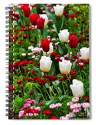 Red And White Tulips With Red And Pink English Daisies In Spring Spiral Notebook