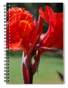 Red And Yellow Asiatic Lilies Spiral Notebook