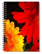 Red And Yellow Spiral Notebook