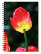 Red And Yellow Tulip - Photopainting Spiral Notebook