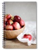 Red Apples Still Life Spiral Notebook