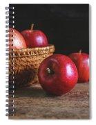 Red Apples Spiral Notebook