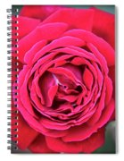 Red As A Rose  Spiral Notebook