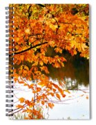 Red Autumn Leaves 2 Spiral Notebook