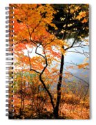 Red Autumn Leaves 5 Spiral Notebook