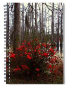 Red Azaleas In The Swamp Spiral Notebook