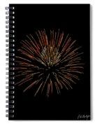Red Ball Spiral Notebook