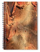 Red Bark Nature Abstract Spiral Notebook