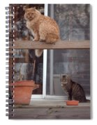Red, Bella And Oliver Spiral Notebook