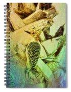 Red Bellied Dream Spiral Notebook