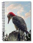 Red-bellied Woodpecker - Tree Top Spiral Notebook
