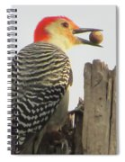 Red-bellied Woodpecker Spiral Notebook