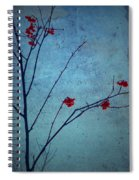 Red Berries Blue Sky Spiral Notebook