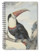 Red Billed Toucan, 1748  Spiral Notebook