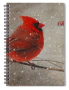 Red Bird In Snow Christmas Card Spiral Notebook
