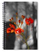 Red Bird Of Paradise Spiral Notebook