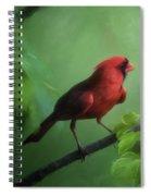 Red Bird On A Hot Day Spiral Notebook