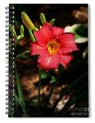 Red Bloom Spiral Notebook