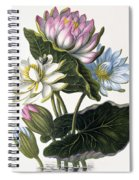 Red, Blue, And White Lotus Flowers Spiral Notebook