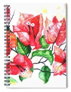 Red Bouganvillia Spiral Notebook