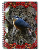 Red Breasted Nuthatch 2 Spiral Notebook
