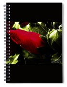 Red Bud On Green Background Spiral Notebook