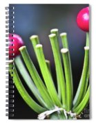 Red Bullets Spiral Notebook