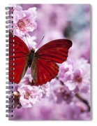 Red Butterfly On Plum  Blossom Branch Spiral Notebook