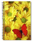 Red Butterfly On Yellow Mums Spiral Notebook