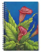 Red Calla Lillies Spiral Notebook