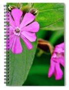 Red Campion - Fairy Flower. Spiral Notebook
