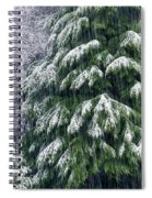 Red Cedar And Snow Spiral Notebook