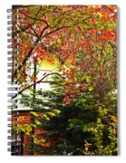 Red Charm Spiral Notebook