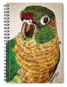 Green Cheeked Conure Spiral Notebook