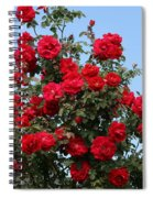 Red Climbing Roses Spiral Notebook