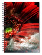 Red Clouds Spiral Notebook