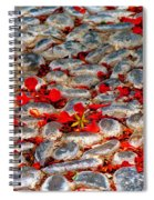 Red Cobblestone Road Spiral Notebook