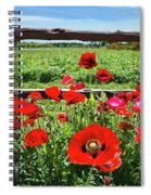 Red Corn Poppies At The Fence Spiral Notebook