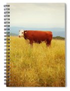 Red Cow On The Blue Ridge Spiral Notebook