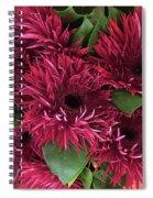 Red Daisies Bouquet Spiral Notebook