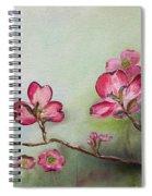Red Dogwood - Cherokee - Springtime Spiral Notebook